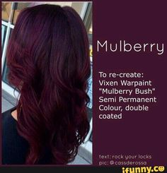p/trendy-hair-color-crazy-fall-ideas-hair-color-crazy-fall-hair-ideas-trendy - The world's most private search engine Pelo Color Vino, Pelo Color Borgoña, Hair Color Dark, Ombre Hair Color, Cool Hair Color, Violet Red Hair Color, Dark Red Hair Dye, Unique Hair Color, Cherry Cola Hair Color