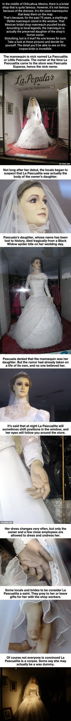 A Mexican Bridal Shop Mannequin Looks Just Like A Preserved Human Corpse (my input.pretty decent story, I'd love to see it someday if it is in fact real) Spooky Stories, Weird Stories, Ghost Stories, Horror Stories, Creepy Facts, Fun Facts, Creepy Things, Creepy Stuff, Random Stuff