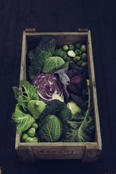 What can you do with all that cabbage?  Plate & Platter has got a few ideas to get you started!