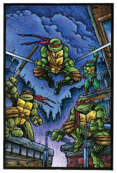 The Bristol Board — Teenage Mutant Ninja Turtles book cover painting...