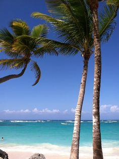 Punta Cana ... RIU Palace