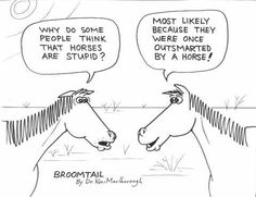 Outsmarted by a Horse comic