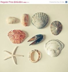 SALE 25 OFF From the Sea  Nature Photograph Sea by CassiaBeck, $11.25