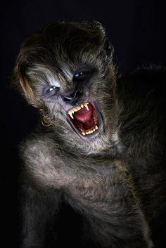 Bizarre en onthullende foto's & Red Band trailer 'Wolves' - FilmTotaal filmnieuws
