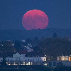 "Spectacular ""Pink Moon"" to grace the night's sky this week"