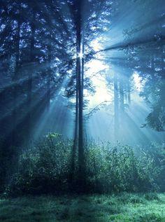 -Light rays are amazzaaa- The Saint