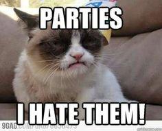 grumpy cat - parties I hate them