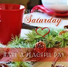 Love Good Morning Quotes, Happy Weekend Quotes, Good Morning Saturday, Saturday Quotes, Weekend Humor, Happy Quotes, Saturday Saturday, Morning Pics, Sunday