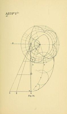 Geometrical Psychology: Benjamin Betts's 19th-Century Mathematical Illustrations…