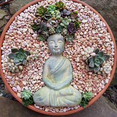 HomelySmart 13 Laying Succulent Arrangements Thats A True Delight HomelySmart Succulent Gardening, Succulent Pots, Planting Succulents, Red Succulents, Succulents In Containers, Cactus Flower, Flower Pots, Flowers, Perfect Plants