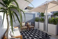 Check out this awesome listing on Airbnb: Green Point Gem - Houses for Rent in Cape Town Cape Town, Renting A House, Perfect Place, Gem, Condo, Houses, Patio, Vacation, Awesome