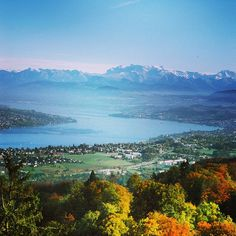 Beautiful view from Uetliberg over Lake Zurich towards the Alps Switzerland Bern, Lake Zurich, Alpine Lake, Swiss Alps, Tbs, Travel Europe, Austria, Heaven, Earth