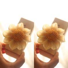 앙금꽃피우기~ 해바라기.. 보며 ^^ 천연가루조색  naturalpowder bean paste flower class  bean flower…