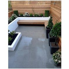 """Simple is often the best solution. Clean and fresh pallete in this courtyard. Regram from @sarah_muston #thedesignhunter #courtyard #landscape…"""