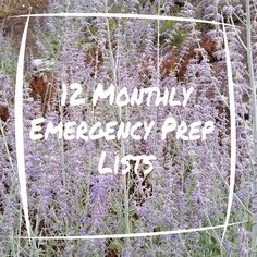 Prepared LDS Family: 12 Monthly Emergency Prep Lists