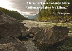 idézetek természetről 10+ Best természet idézet images | idézetek a természetről, idézet