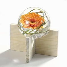 Bubble Bowl Centerpiece Ideas - Wedding Centerpiece Ideas