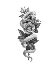 Image could contain: Plant – snake snake - diy tattoo images - Image could contain: Plant snake snake - Snake And Flowers Tattoo, Flower Tattoo Drawings, Tattoo Design Drawings, Flower Tattoo Designs, Flower Tattoos, Unique Tattoo Designs, Tattoo Sketches, Snake Around Arm Tattoo, Bird Tattoos