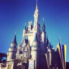Cinderella's Castle - Walt Disney World - Florida