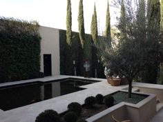 LOVE the pool and patio/ landscaping Jan Showers | Blog | SAN MIGUEL DE ALLENDE