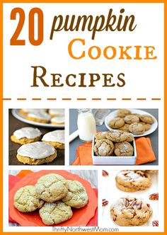 We've got a roundup of delicious pumpkin cookie recipes, everything from a Pumpkin Spice Cookie Recipe to White Chocolate Pumpkin Cookies & more! Pumpkin Spice Cookie Recipe, Pumpkin Cookies, Pumpkin Dessert, Pumpkin Recipes, Fall Recipes, Thanksgiving Recipes, Chip Cookies, Holiday Recipes, Best Dessert Recipes