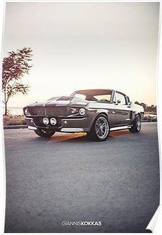 Ford Mustang Shelby/Mustang Eleanor = Eleonor, she holds the key to my heart and someday I'll hold the keys to her. Shelby Gt500, Shelby Mustang, Mustang Gt500, 1967 Mustang, Ford Shelby, Mustang Cars, Ford Mustangs, Luxury Sports Cars, Dream Cars