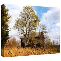 "ArtWall 'CVNP Barn' by Cody York Photographic Print on Wrapped Canvas Size: 16"" H x 24"" W"