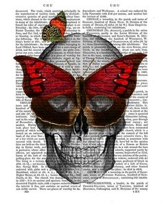 Skull with Butterfly Mask skull Illustration by DottyDictionary