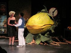 suddenly seymour (pinprick) Tags: plant play puppet musical audrey seymour coupeville littleshopofhorrors audreyii coupevillehighschool