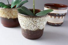 Items similar to Modern Minimalist White Ceramic Flowerpot Succulent Plant Pot 3 Bonsai Planters with Bamboo Shelf Home Garden Decor on Etsy Vintage Planters, Ceramic Planters, Planter Pots, Flower Planters, Flower Pots, Porcelain Ceramics, White Ceramics, Lava, Etsy Vintage