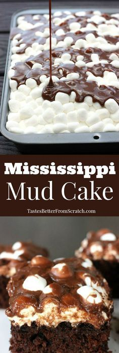 Mississippi Mud Cake--homemade chocolate cake with marshmallows and warm chocolate frosting poured on top! BEST CAKE EVER! Chocolate Marshmallow Cake, Chocolate Pops, Hot Chocolate Cookies, Chocolate Frosting, Homemade Chocolate, Chocolate Lovers, Chocolate Chocolate, Dessert Cake Recipes, No Cook Desserts
