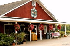 Spicer's Apple Orchard - Hartland, MI (Already seen it, I live in Hartland!!  Had to re-pin though) =)