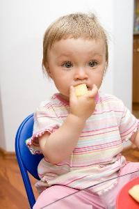 Foods That a 14-Month-Old Should Eat @Lora Cherry