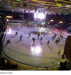 Kärpät! Hockey, Sports, Hs Sports, Excercise, Sport, Exercise, Field Hockey, Ice Hockey