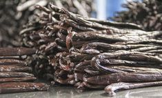 A Trip to Tahiti: The Origin of the World's Best Vanilla. We take a look at how vanilla beans are grown and cured on the farms where we source our premium vanilla in Tahiti. Vanilla Cream, French Vanilla, Origin Of The World, Herbs Indoors, Tahiti, The Cure, Herb Garden, Vanilla Beans, Cottage