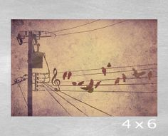 "Bird on a Wire Music Staff and Treble Clef Illustration Fine Art Giclee Print 4 x 6 - ""Bird Song"" auf Etsy, 9,38 €"