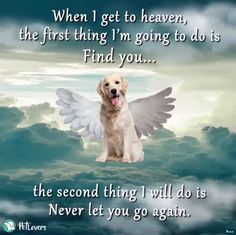 My sweet darling girl . I'll find you as soon as I'm done here. - My sweet darling girl …. I'll find you as soon as I'm done here…. I love and miss you so v - Pet Loss Grief, Loss Of Dog, I Love Dogs, Cute Dogs, Miss My Dog, Dog Poems, Pet Remembrance, Dog Memorial, Rainbow Bridge