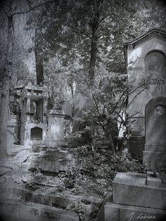 Pere Lachaise Paris Pere Lachaise Cemetery, Paris, France, Monochrome, Nature Photography, Graveyards, Fantasy, Footprints, Black And White