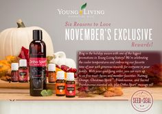 Young Living November Promotion member # 2818934 free gift!