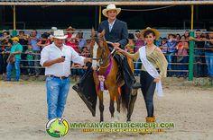Juzgamiento equino en Plaza de ferias de @SAN VICENTE DE CHUCURI (Noviembre 10 de 2013) - @SAN VICENTE DE CHUCURI