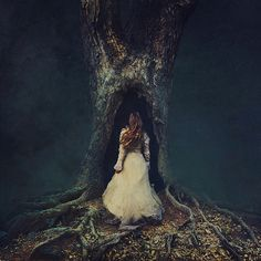 discoveries | by brookeshaden