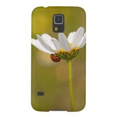 Beautiful Ladybug Samsung Galaxy S5 Case