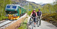 Broke from Myrdal to Flam Norway