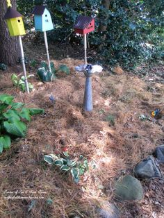 Learn how to start a new flowerbed without having to till! Sheet composting is the secret!
