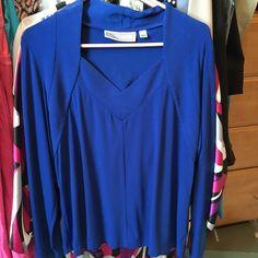 Simonton Says Cobalt Blue V Neck Long Sleeve Top Size Large Cobalt Blue Top. V neck. Soft Fabric. Super Comfortable. Simonton Says Tops Tunics
