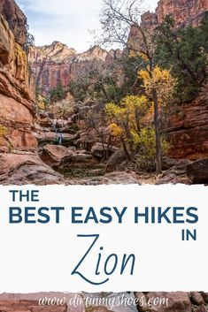 There are so many fun things to do in Zion National Park, but if you hope to find the best easy hikes for your vacation, this list is for you. Whether you are hiking with kids, don't want to over-do it, or have some limitations, this list has what you need. Kolob Canyon, Zion Canyon, Canyon Road, Zion National Park, National Parks, Snow Canyon State Park, Riverside Walk, Hiking With Kids, Free Park