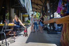 Pet Friendly Dining at the Grove Arcade Visit Asheville, Ashville Nc, Dog Friendly Hotels, Blue Ridge Parkway, Pet Travel, Mans Best Friend, Dog Friends, Adventure, Pets