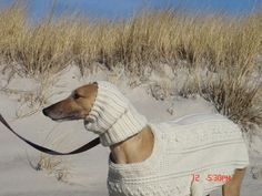 Crochet Greyhound Fisherman Sweater & Snood by GreyhoundCrafts, via Flickr