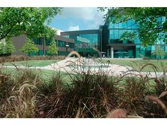 University of Houston, Clear Lake
