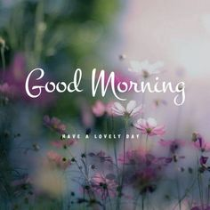 Cute Good Morning Texts, Good Morning Handsome, Good Morning Image Quotes, Good Morning Inspiration, Good Morning Photos, Good Morning Messages, Morning Pictures, Motivational Good Morning Quotes, Good Morning Beautiful Pictures